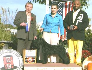 Leeloo- first in Class, Judge: Munro, HatboroKC- oct07